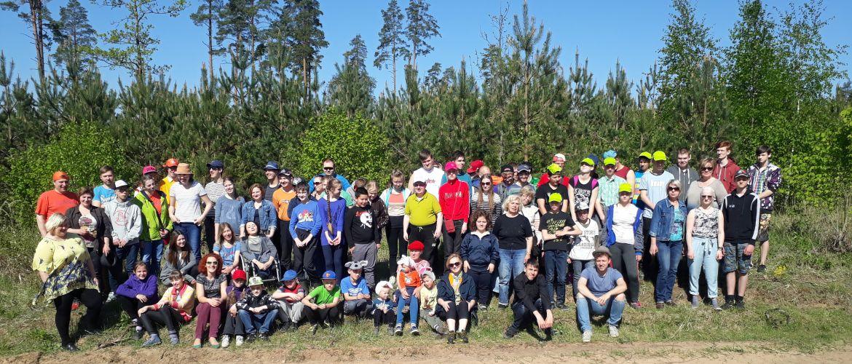 Dāvana Latvijai simtgadē – 30 000 iestādītu priedīšu